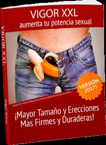 vigor-xxl-pdf